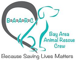 pet adoption in concord california bay area animal rescue